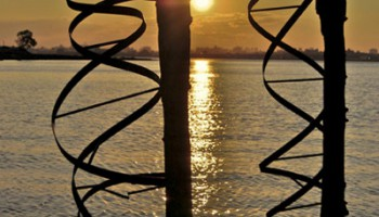 1_helices@sunset72