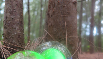 Handblown glass orbs in the forest, pond, and on the shore