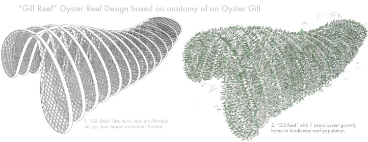Gill Reef Oyster Reef Design